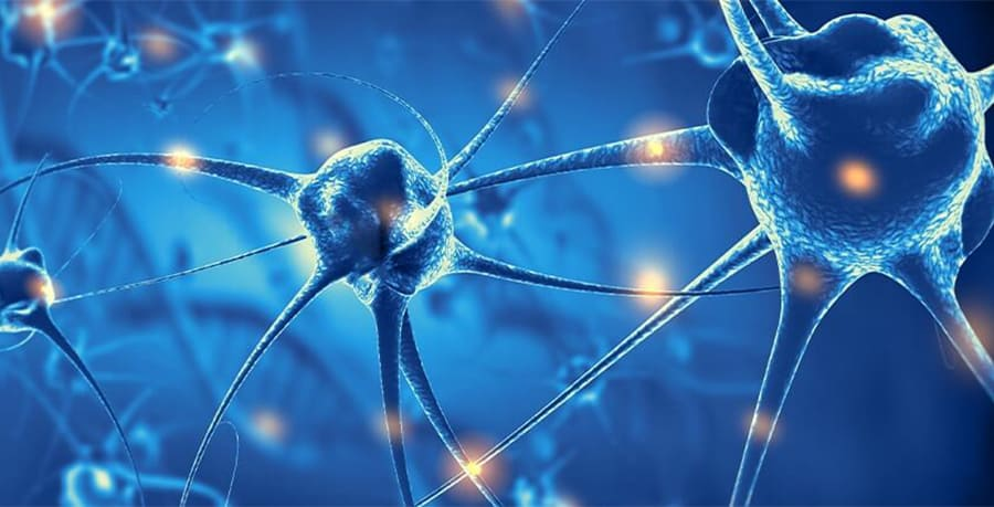 Neurofeedback / Ergotherapie Mareen Ernst